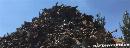 Позиції коксівного вугілля не ослабнуть